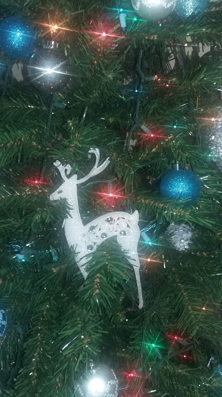 His favourite ornament.